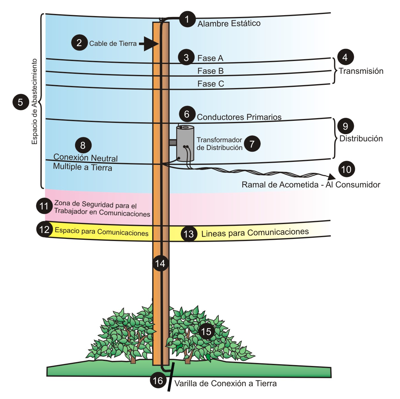 What's on a Utility Pole? - Florida Public Service Commission